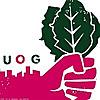Urban Organic Gardener |  Urban Gardening