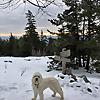 Hiking In The White Mountains & Adirondacks