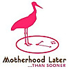MotherhoodLater.com