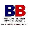 British Boxing News | British Boxers BBTV - News, Videos, Interviews
