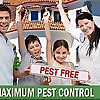 Maximum Pest Control Services Blog