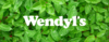 Wendyl's | All Natural Cleaning Products