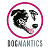 Dogmantics Dog Training Kikopup Artist