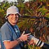 Mark's Wild Thyme Birding