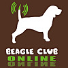 Beagle Club Online