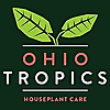Ohio Tropics Houseplant