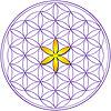 University of Metaphysical Sciences