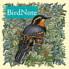Bird Note Podcast