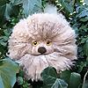 LucyRavenscar | Crochet Creatures