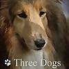 Three Dogs in a Garden   Personal Gardening Blog