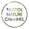 Bristol Nature Channel | Youtube