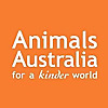Animals Australia | Youtube