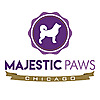 Majestic Paws Chicago | Dog Walking & Pet Sitting Blog