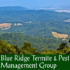 Blue Ridge Termite & Pest Management Group