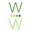 Wiser Wealthier - Earning More Money