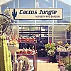 Cactus Jungle