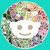 Reddit - Succulent Plants