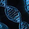 Beyond DNA | Genetic Ancestry Testing | Genealogical Dna Test