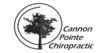 Cannon Pointe Chiropractic – Northfield Chiropractic Blog
