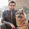 Training Positive | Dog Youtuber