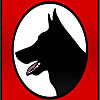 Kraftwerk k9 | German Shepherd Breeder