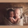 Sandra Hill Photography   Ontario Newborn Photographer