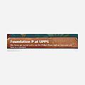 Foundation P at UPPS