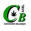 Cannabis Belgique