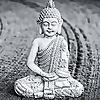 Buddha Is My Caddie - BIMC