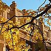 University of Washington | Department of Sociology