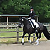 Rocky Road to Dressage