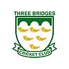 Three Bridges Cricket Club