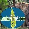 Lanka4me   Tours & Accomodation Travel Blogs About Sri Lanka.