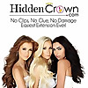 Hidden Crown Hair Extensions