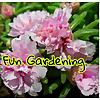 Fun Gardening | Gardener Monika
