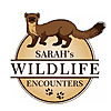 Sarah's Wildlife Encounters