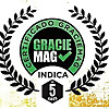 Graciemag | The Original Brazilian Jiu-Jitsu Magazine