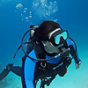 Underwater Amira Dive Videos