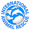 International Animal Rescue - Saving animals from suffering around the world