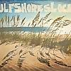 Live Gulf Shores Local | IXL Real Estate