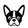 Frenchie Shop - Blog