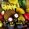 Tropical Fruit Forum - International Tropical Fruit Growers