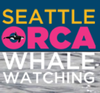 Seattle Orca Whale Watching