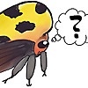 Ask an Entomologist