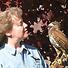 Phoenix Fire Falconry