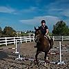 Budget Equestrian