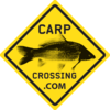 Carp crossing | Dedicated To Carp