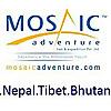 Mosaic Adventure