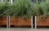 Gardening in the sky   Balcony Gardening Blog