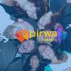 Pirwa | Peru Hostel Blog